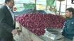 150ರ ಗಡಿ ಸಮೀಪಿಸಿದ ಈರುಳ್ಳಿ ದರ, ರಾಜ್ಯದಲ್ಲೂ ದರ ಏರಿಕೆ ಬಿಸಿ