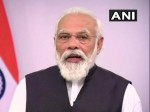 India Seeing Green Shoots Of Economic Recovery Pm Modi