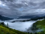 India Happiness Report 2020 Mizoram Top Of The List
