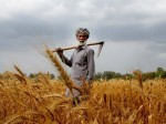 Pm Kisan Samman Nidhi 8th Instalment Coming Soon Check Status