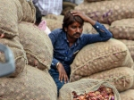 ಬೆಂಗಳೂರಿನಲ್ಲಿ ಕೇಜಿ ಈರುಳ್ಳಿಗೆ 200 ರುಪಾಯಿ; ಸೇಬು, ದಾಳಿಂಬೆಗಿಂತ ದುಬಾರಿ