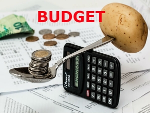 Union Budget 2018 Important Terms Know About Budget