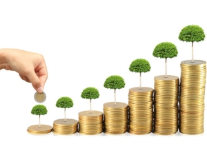 Best Tips A Fresher Start Investing Stocks