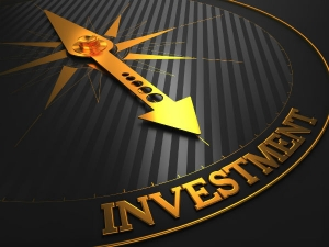 Types Investments India