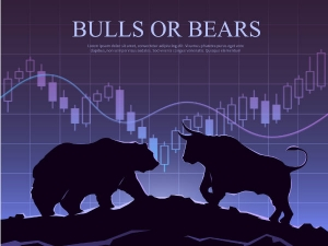 What Is Shares Stocks