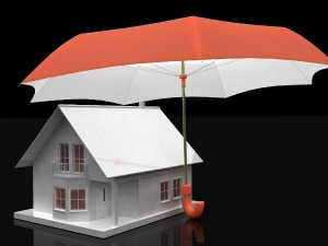 Home Loans How Choose The Best Repayment Option