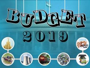 Interim Union Budget 2019 A Curtain Raiser