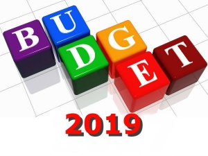 What Is An Interim Budget