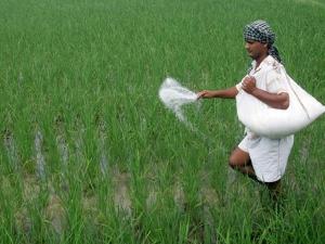 Interim Union Budget 2019 Agriculture Pradhanmantri Kisan Samman Yojna Rs 6000 For Farmers