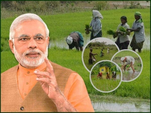 Under Pm Kisan Scheme Why Is Money Credited Into Some Farme