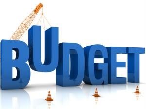 Union Budget 2014 No Major Sops Likely For Salaried Class