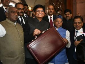 Interim Union Budget 2019 Who Said What