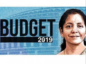Union Budget 2019 Nirmala Sitharaman Will Announce These