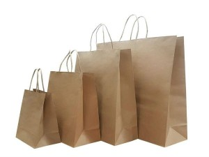 Ban On Single Use Plastic How To Start Paper Bag Business