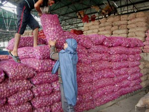 Kolkata State Government Provide Onions At Rs 50 Per Kg
