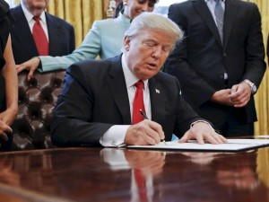 Us Govt Working To Temporarily Ban H 1b And Other Work Visas