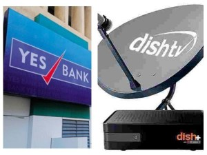 Yes Bank Acquires 24 19 Stake In Dish Tv